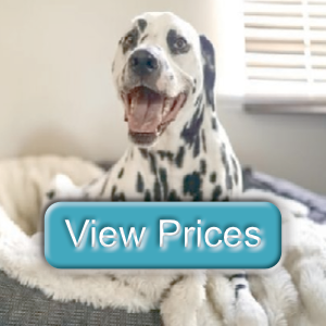 view prices button